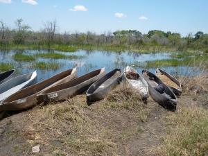 Delta mode of transport-Botswana