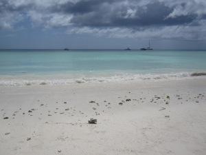 Indian Ocean, Zanzibar, Tanzania, Africa