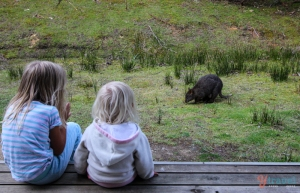 The girls in Bruny Island