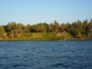 The banks of the Nile River