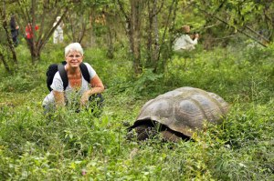 In the Galapagos (Ecuador) with giant tortoises