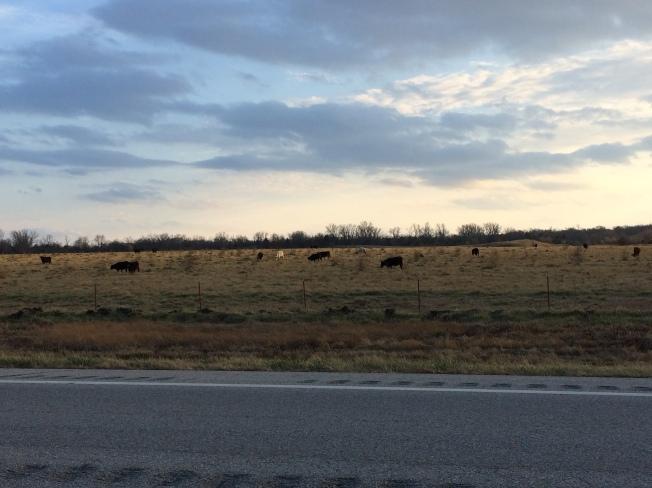 Sunlit skies of Kansas