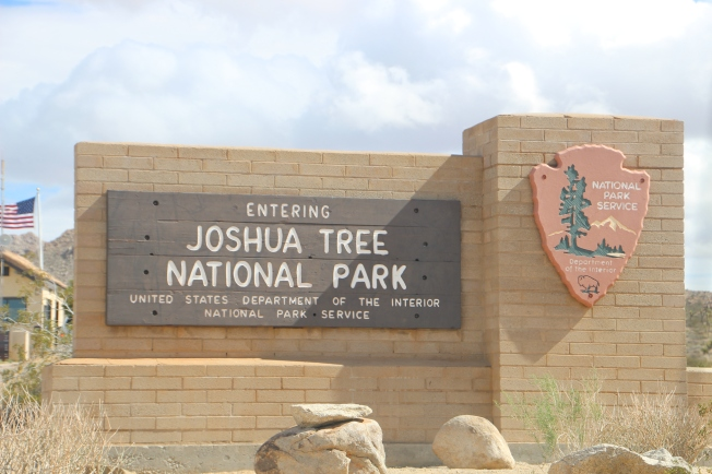 Joshua Tree National Palr