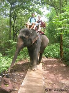 Elephant Ride-Thailand - the gift of travel