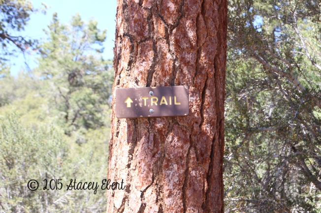 Trail sign at Big Bear Lake