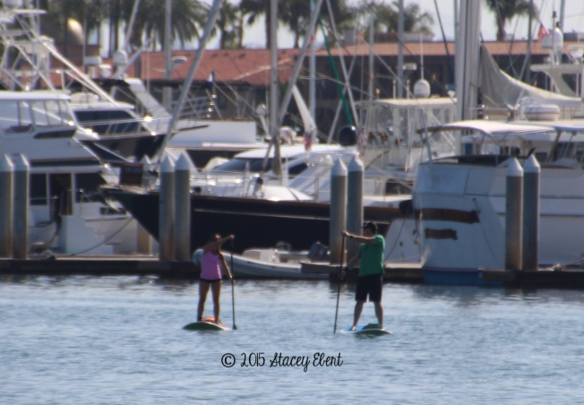 Paddle Boarding lesson - San Diego - the gift of travel