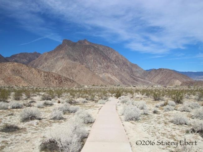 Anza - Borrego Desert State Park - San Diego - thegiftoftravel.wordpress.com